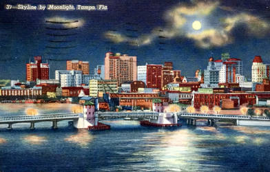 Night Scene Postcards - Tampa Skyline By Moonlight by Yesterdays-Paper