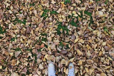 Hello autumn by UmYesPlease