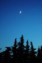 Past twilight by UmYesPlease
