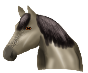 Realistic horsie by anid11