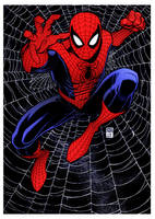 Spider-Man by Arthur Adams by DrDoom1081