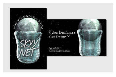 Business Cards - Skyy Net by chorvath8