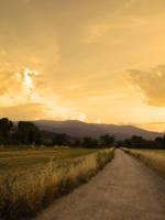 Countryside Sunset VII by LorenzoDiFolco