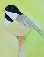 Chickadee by Toadinthegarden