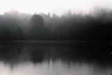 Black-n-White Dream_10 by caddman