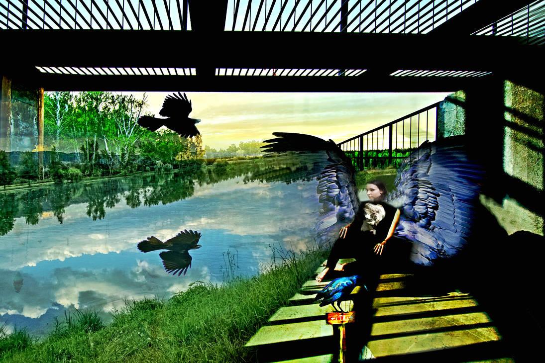 T Wing Dreams 13 by caddman