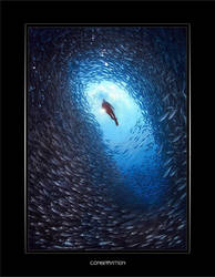 Conspiration by Chacalxxx