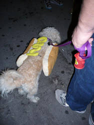 hot dog by Leo-electronic