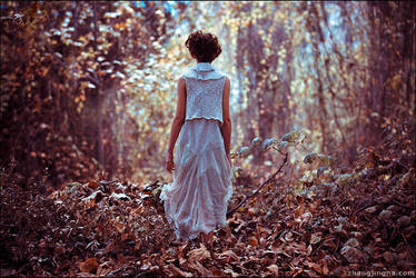 Into Wonderland by zemotion
