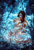 Motherland Chronicles 6 - Alli in Wonderland by zemotion