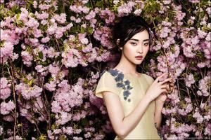 Season of Bloom by zemotion