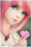 Flower by Geekisthecolour