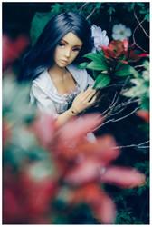 Secret Garden by Geekisthecolour
