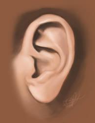 Ear Study by jaggedpixel