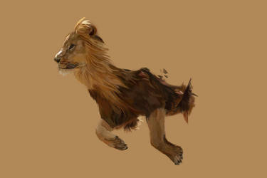 Lion WIP by Liko