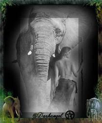 Elephant by XxNachtblut-LadyxX