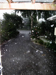Summer Hail by sammcj2000