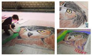 Sidewalk Chalk - Owl by Llewxam888