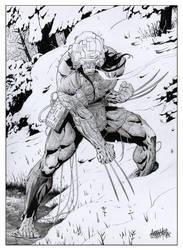 Wolverine Weapon X by garnabiuth