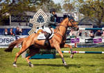 Stock show Jumping horse running by ToftPilgaard