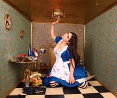 Alice 8 by ThePrincessNightmare