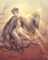 Young Harpy by sparrow-chan