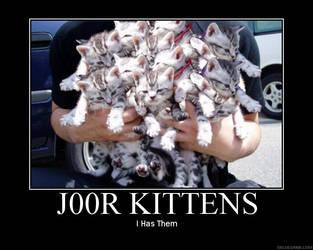 j00r kittens by Jaffar8