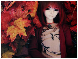 + Red Autumn + by Lei-Xing