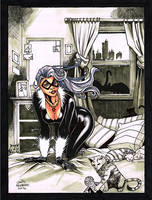 Black Cat by davidnewbold