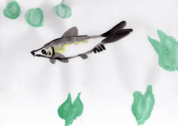Chinese painting: Fish by Spinomette