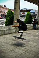 Skate2 by melolonta