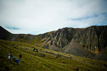 4600m. by melolonta