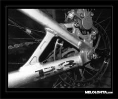 selportrait2 by melolonta