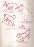 Lynx Sketches by Terra-fen