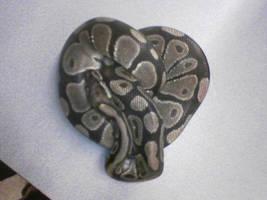 Heart by Terra-fen