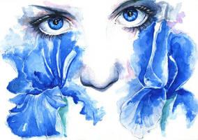 Iris by proxi-mity