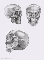 skull practice by StoneBattleAxe