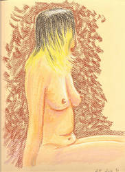 Life Drawing in Pastel 1 by warlok42