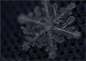 snowflake 1 by KiwisaftDEsign
