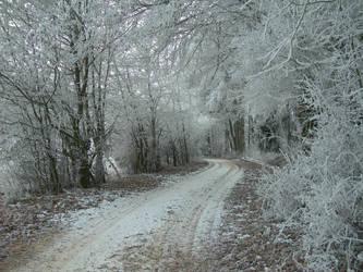 Winter Path I by kuschelirmel-stock