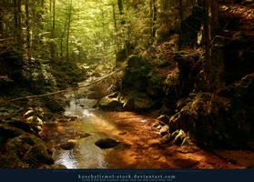 Forest River 02 by kuschelirmel-stock