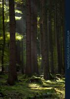 Grimm's Forest in October 09 by kuschelirmel-stock
