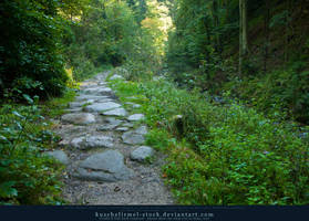 Find Your Way 02 by kuschelirmel-stock