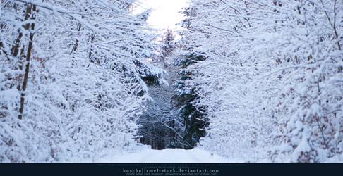 Winter Wonderland 05 by kuschelirmel-stock