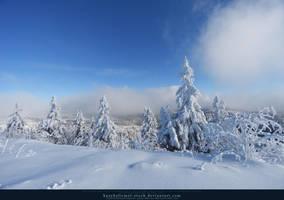 White Forest 02 by kuschelirmel-stock