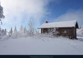 White Forest 08 by kuschelirmel-stock