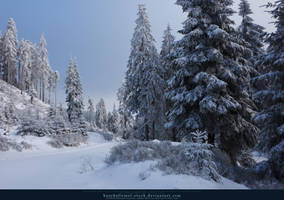 White Forest 09 by kuschelirmel-stock