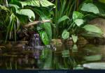 Lilly Leaves 02 by kuschelirmel-stock