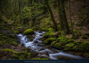 Black Forest River Preview by kuschelirmel-stock