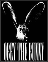 Obey The Bunny by feethebunny